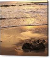 Rock On The Beach Canvas Print