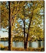 Rock River In October Canvas Print