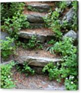 Rock Stairs Canvas Print