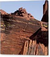 Rock Texture And Lichen Canvas Print