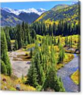 Rockies And Aspens - Colorful Colorado - Telluride Canvas Print