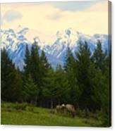 Rockies Canvas Print