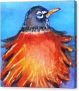 Rockin Robin Canvas Print