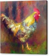 Rockin' Rooster Canvas Print