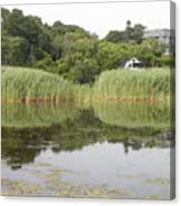 Rockport Reeds And Reflections Canvas Print