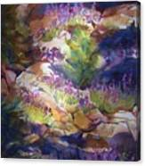 Rocks And Lupine    Sold Canvas Print