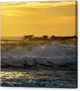 Rocks At Palm Beach At Sunrise Canvas Print