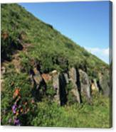 Rocks, Flowers, And Hillside Canvas Print
