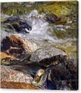 Rocks In A Stream 2a Canvas Print
