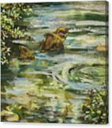 Rocks In A Stream Canvas Print