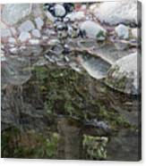 Rocks In Reflection Canvas Print