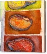 Rocks Number 3 Canvas Print