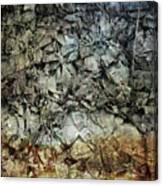 Rocky Abstraction Canvas Print
