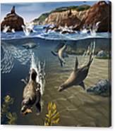 Rocky California Shore Canvas Print