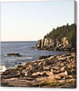 Rocky Coast Of Acadia Canvas Print