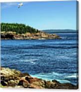Rocky Coastline 3 Canvas Print
