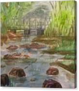Rocky Creek In The Catskills  Canvas Print