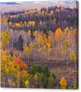 Rocky Mountain Autumn View Canvas Print