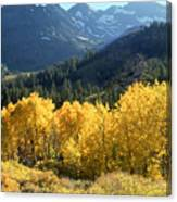 Rocky Mountain High Colorado - Landscape Photo Art Canvas Print