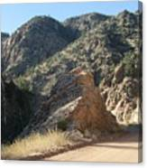 Rocky Mountain Mascot Canvas Print