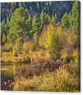 Rocky Mountains Autumn Canvas Print