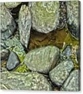 Rocky Nature Canvas Print