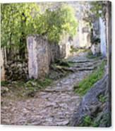Rocky Pathway Canvas Print
