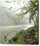 Rocky River #1 Canvas Print