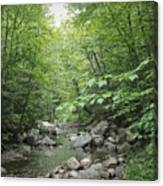 Rocky River In Green Canvas Print