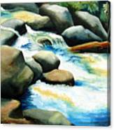 Rocky River Run Canvas Print