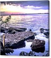 Rocky River Shore Canvas Print