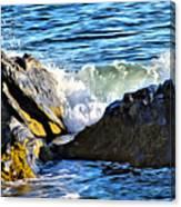 Rocky Shore 1 Canvas Print