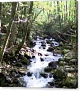 Rocky Stream 6 Canvas Print