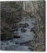 Rocky Stream Canvas Print
