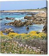 Rocky Surf With Wildflowers Canvas Print