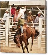 Rodeo Cowboy Riding A Wild Horse Canvas Print