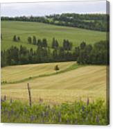 Rolling Farmland Stretches Canvas Print