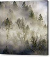 Rolling Fog In Sandy River Valley Canvas Print