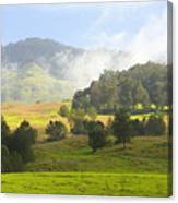 Rolling Green Hills Canvas Print