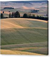 Rolling Hills Of The Palouse Canvas Print