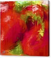 Roma Tomatoes Canvas Print