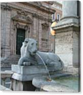 Roman Lion Canvas Print