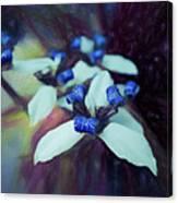 Romantic Island Lilies In Blues Canvas Print