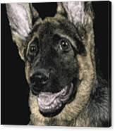 Rommel Canvas Print