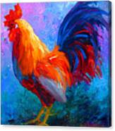 Rooster Bob Canvas Print