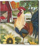 Rooster On The Apple Farm Canvas Print