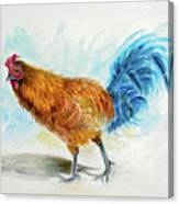 Rooster Watercolor Canvas Print