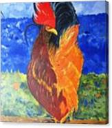 Rooster With Attitude Canvas Print