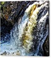 Rootbeer Falls Canvas Print