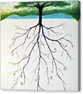 Roots Of A Tree Canvas Print